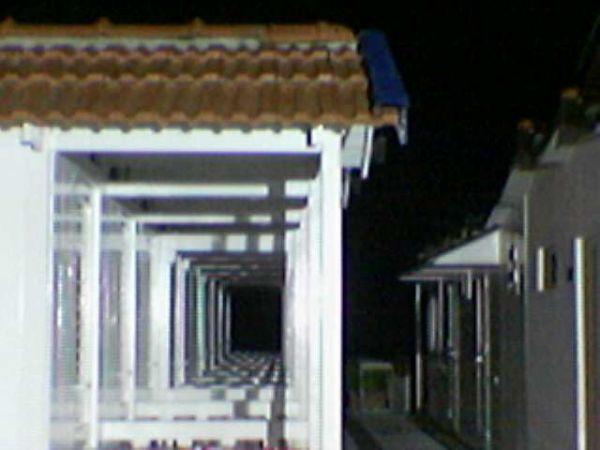 notturno3